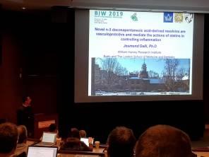 Dr Jesmond Dalli presenting at the Banff Inflammation Workshop